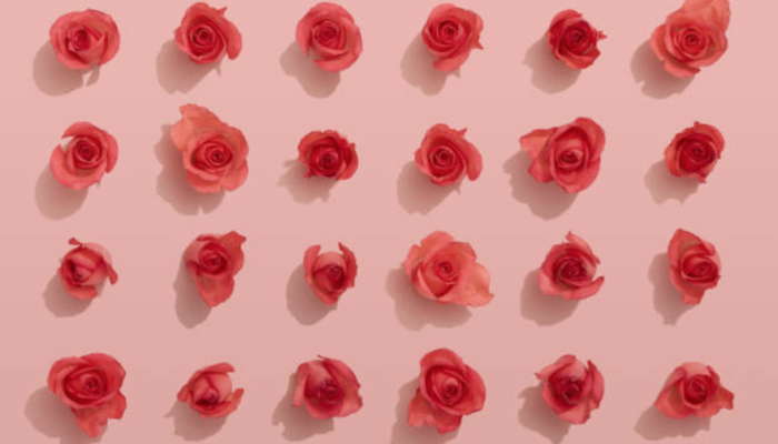 5 healing benefits of rose water